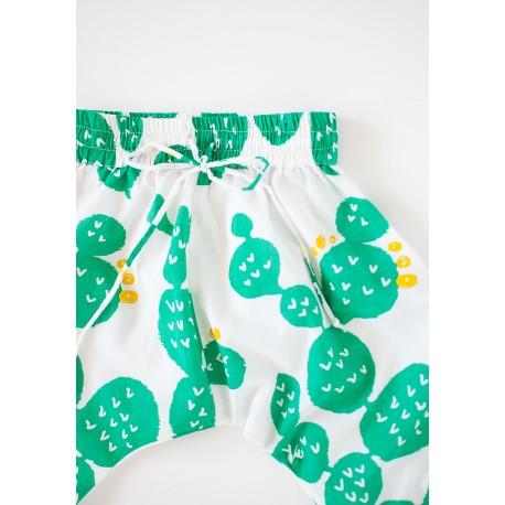 Pant cactus